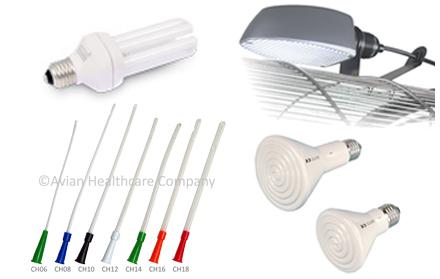 Sondes, warmte- en daglichtlampen